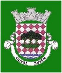 Olival.jpg