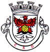 Clube Atlético Ouriense .jpg