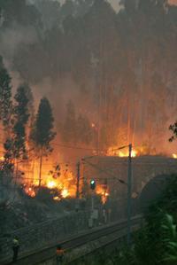 incendio-ourem-6.jpg